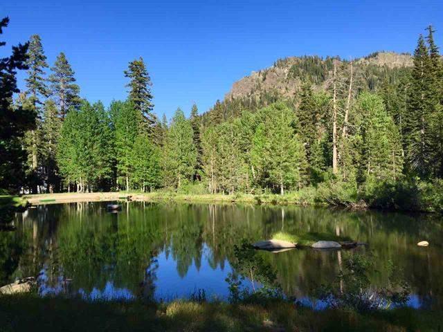Alpine Springs Park 3