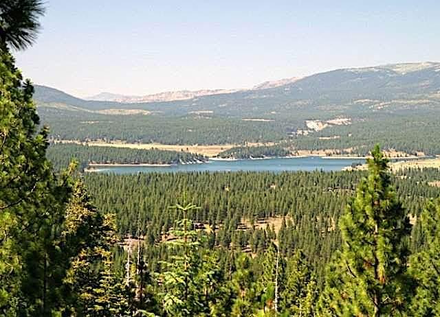 Juniper Hills view