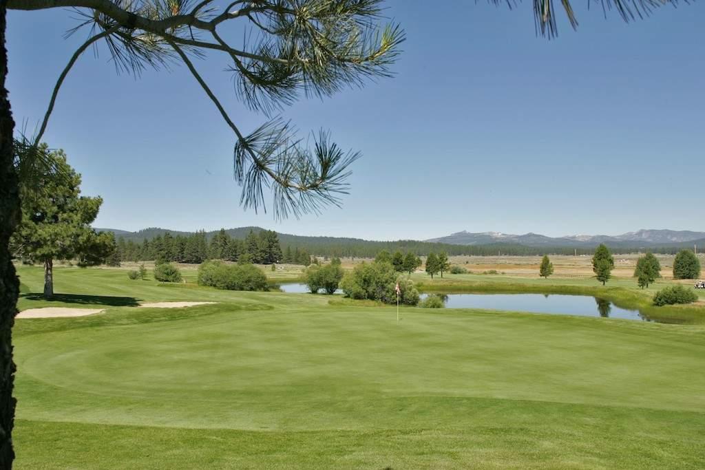 golf hole 8